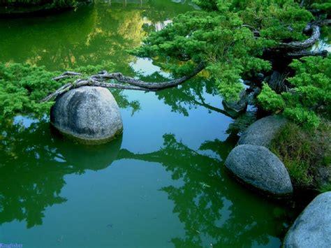 free garden rocks serenity of the japanese rock garden