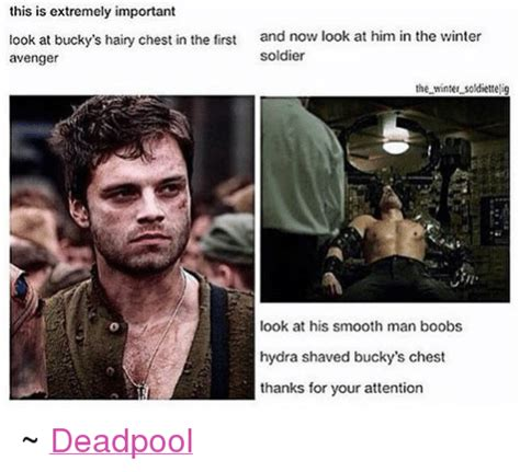 Hairy Men Meme - this is extremely important look at bucky s hairy chest in