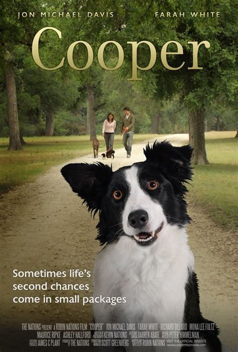 biography of border movie cute heartwarming film quot cooper quot aka quot angel dog