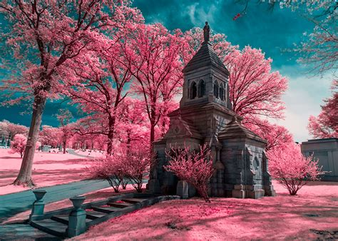 infrared color infrared photography getting more color from your 720nm