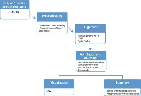 rnaseq workflow a workflow for analysis of small rna sequencing data rna