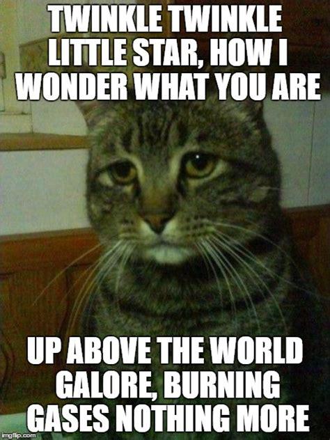 Depressed Cat Meme - depressed cat meme imgflip