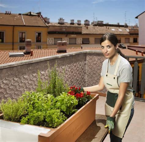 l orto in terrazzo ortaggi a km zero arriva urbano l orto in terrazzo