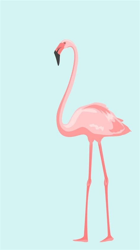 flamingo wallpaper iphone 5 baby blue pink flamingo iphone wallpaper panpins wall