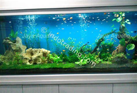 Harga Aksesoris Aquarium by Jual Aquarium Aquascape Akuarium Aksesoris Harga Murah