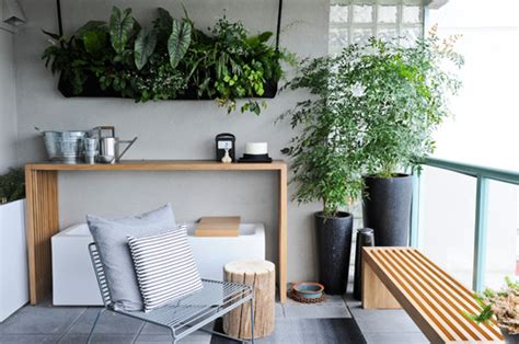 Modern Budget Deck by Indoor The Lovely Plants