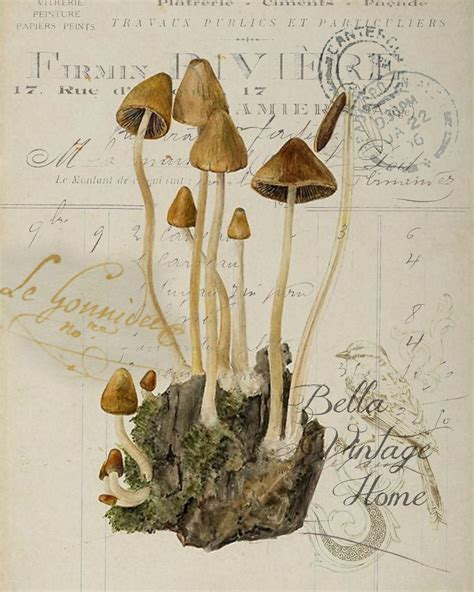 Mandala Arm 4765 by Botanical Brown Print Pillow Note Cards Tea