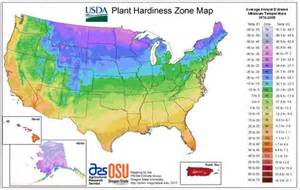 map of growing zones in the us plants that flower in winter