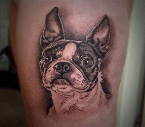 terrier tattoo designs 25 best ideas about boston terrier on