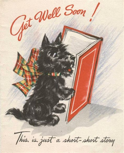 Scottie Cards - 7 curated vintage pet get well ideas by dollhouseguy