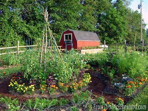 edible backyard garden inspiration pinterest finds green gardening