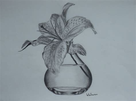 Pencil Drawing Flower Vase by 17 Best Images About Graphite Pencil Drawings On Sailboat Michelangelo And