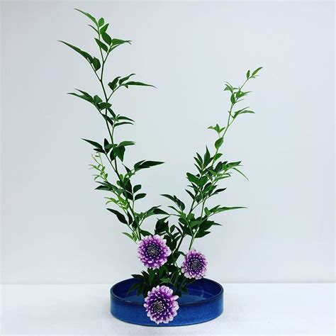flower arrangement styles ikebana styles of japanese flower arrangement johnny times