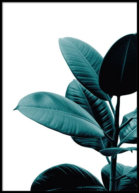 Home Design Inspiration Instagram by Botanical Print Of A Plant Poster With A Photo Desenio