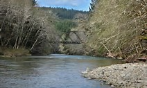 Image result for clearwater, wa