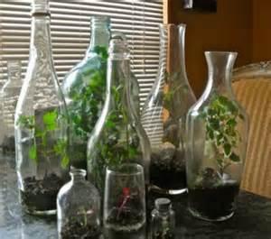 Terraria Chandelier Tiny Living Worlds In Glass 12 Terrarium Ideas Webecoist