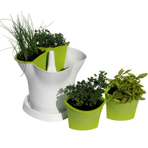 herb pot herb pot compost in stock now greenfingers com