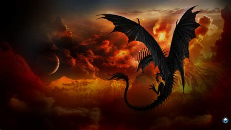 Dragon Full Hd Wallpaper And Background 1920x1080 Id