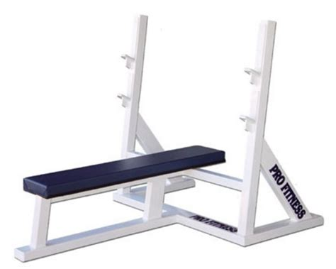 professional bench press equipment true natural bodybuilding bench presses