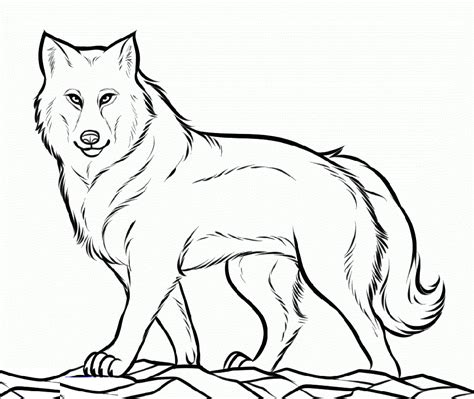 coloring pages with wolves wolf coloring pages