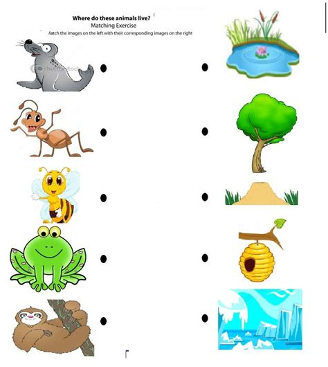 printable animal homes animals and their homes coloring pages