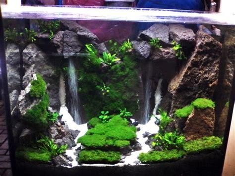 membuat air terjun aquascape sederhana akuarium ikan hias