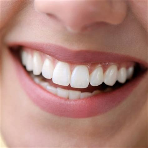 healthy gums 4 best vitamins for healthy gums essential vitamins for healthy gums vitamins estore