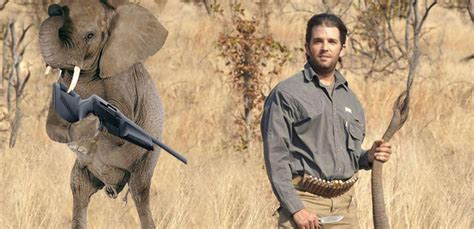 donald trump elephant redditors photoshop donald trump jr holding a dead