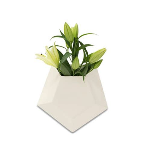best ceramic wall planter products on wanelo