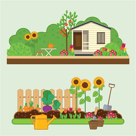vegetable garden clip vegetable garden clip vector images illustrations