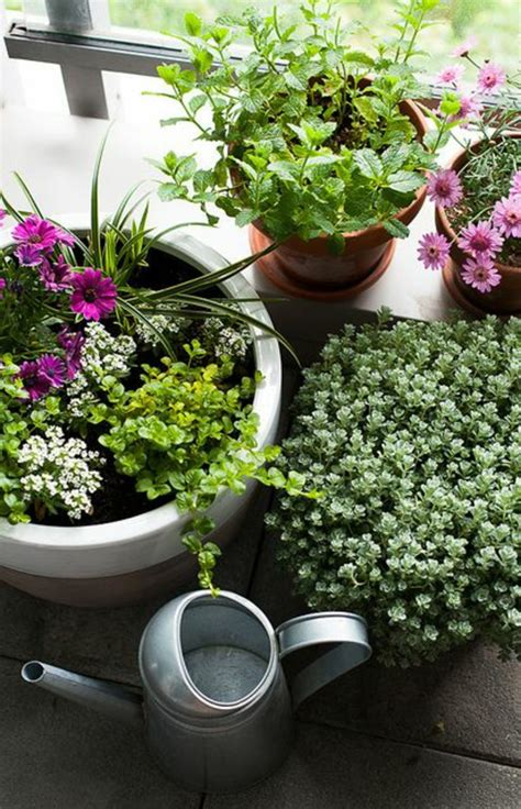 blumen für den garten balkon dekor bepflanzen