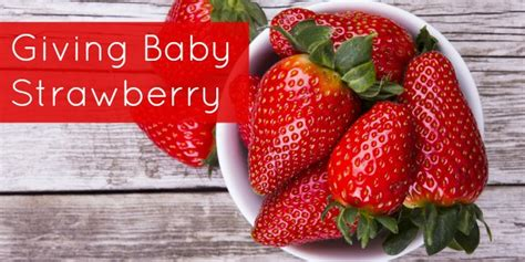 baby strawberry strawberry for baby food wholesomebabyfood