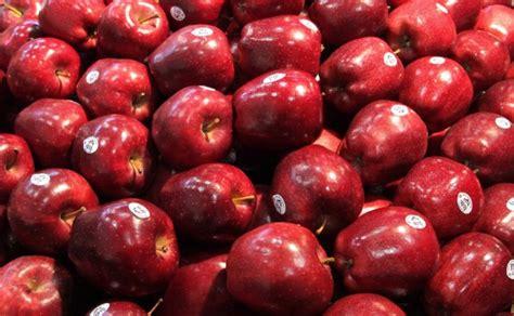 apple china us eyes chinese apple market