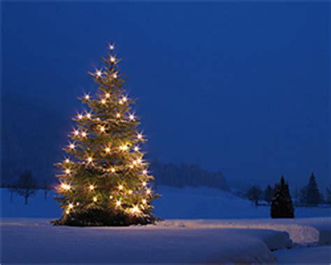 weihnachtsbeleuchtung garten weihnachtsbeleuchtung im garten selbstgemachte deko