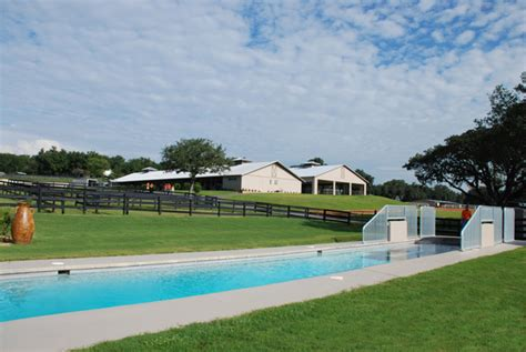 The Centers Ocala Fl Detox by The Sanctuary Equine Sports Therapy And Rehabilitation