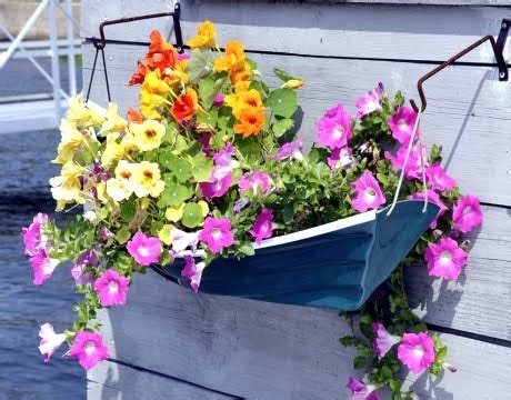 Nautical Planters by Awesome Porch Garden Planters With A Coastal And