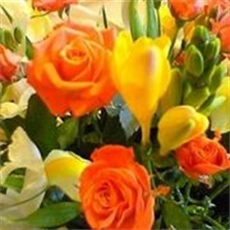 fiori per uomo fiori per un uomo domande e risposte fiori
