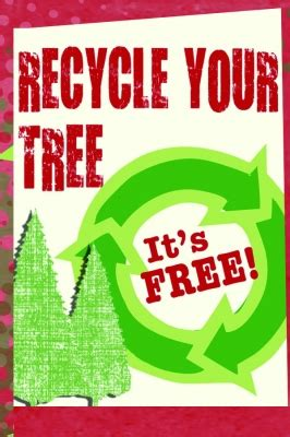 make a difference by recycling your christmas tree city