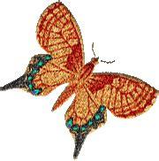 cara memasukkan gambar bergerak format gif ke blog clipart butterfly gambar animasi kupu kupu simomot