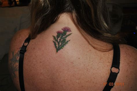 thistle tattoo my thistle