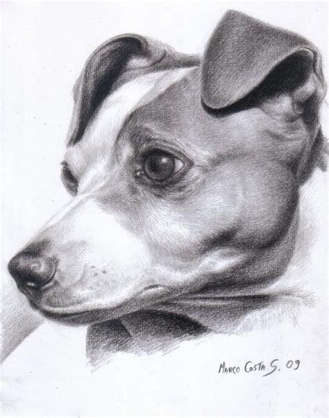 imagenes a lapiz de perritos dibujos hechos a lapiz de perros imagui