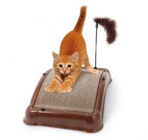 cat scratching couch solution 10 best images about cat scratching post diy on pinterest