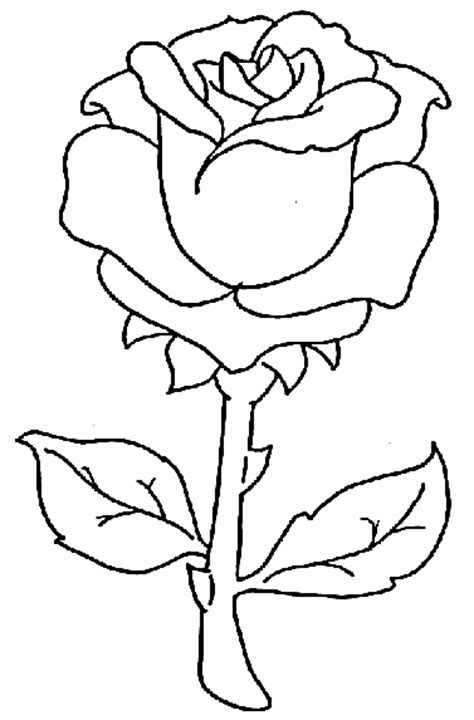 free flower rose coloring pages
