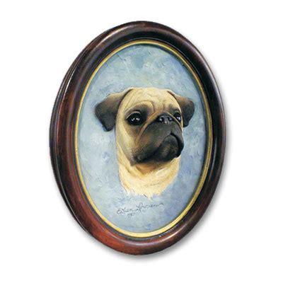 oldest pug on record pug fawn portrait