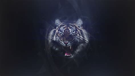 abstract tiger wallpaper abstract tiger wallpaper free download gamefree download