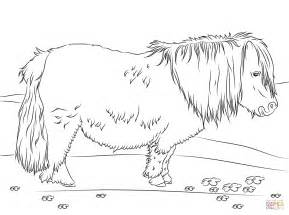 Shetland Pony Coloring Pages shetland pony coloring page free printable coloring
