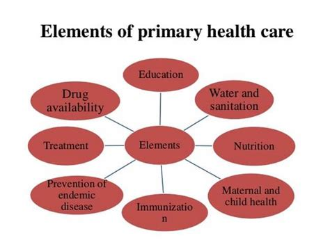 organization pattern of primary health centre primary health care definition elements and principles