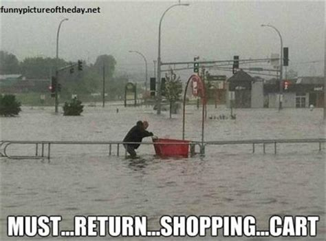 Shopping Cart Meme - funny friday pictures 75 pics