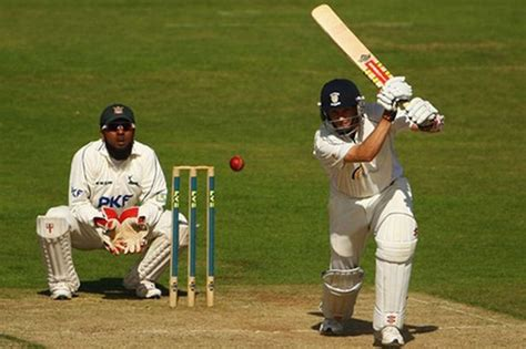 of cricket cricket thinglink