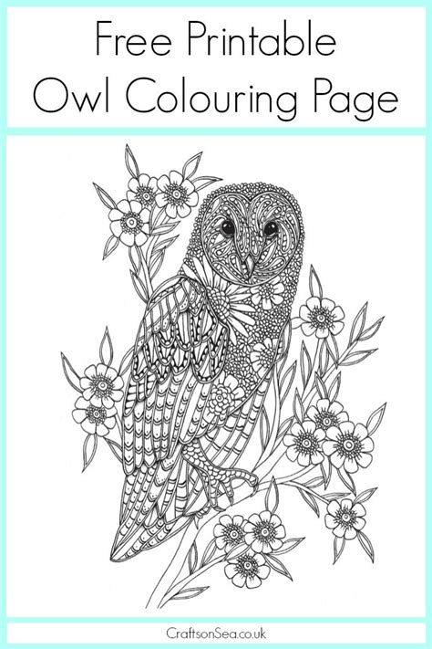 printable owl moon 22 best fiar owl moon images on pinterest owls barn